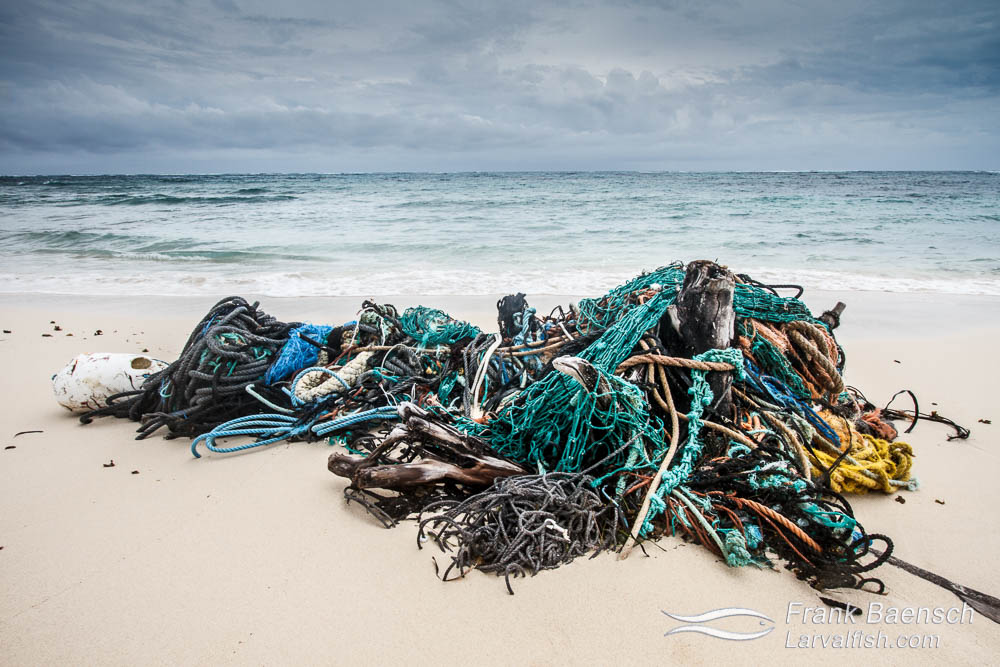 An abandoned fish net on a beach in the Bahamas.