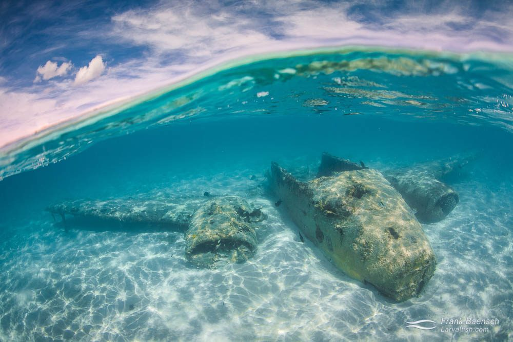 A plane wreck in shallow waters of Exuma, Bahamas.