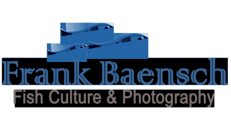 Frank Baensch Logo